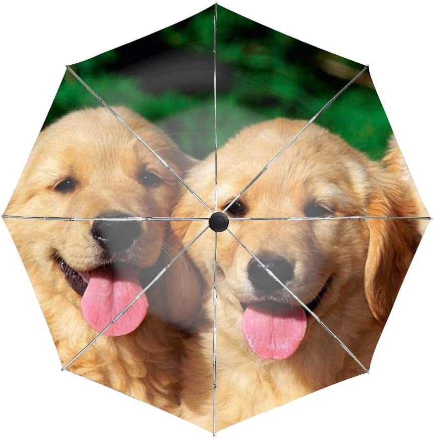 Old Yella Dog Compact Travel Umbrella with Windproof Double Canopy Construction Auto Open//Close Button