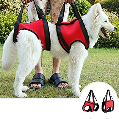 Dog Lift Support Harness, Sling Lift Support Harness for Injuries, Arthritis or Weak hind legs & Joints. Medium and Large breed Assist Sling for mobility & Rehabilitation(L, Red)