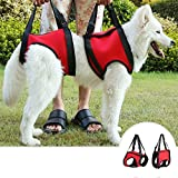 Dog Lift Support Harness - Sling Lift Support Harness for Injuries - Arthritis or Weak hind legs & Joints. Medium and Large breed Assist Sling for mobility & Rehabilitation(L - Red)