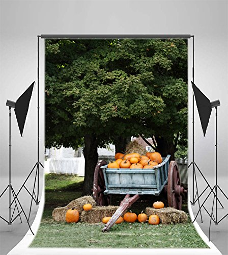 Laeacco 3x5ft Vinyl Backdrop Photography Background Orange Pumpkins Wagon under Shady Oak Tree for Sale Autumn Harvest Nature Background Boys Cowboy Adults Portraits Backdrop Adult Halloween (Shady Tree Studio)
