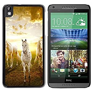 LASTONE PHONE CASE / Slim Protector Hard Shell Cover Case for HTC DESIRE 816 / Clouds Horses Nature Sunset Mustang by ruishername