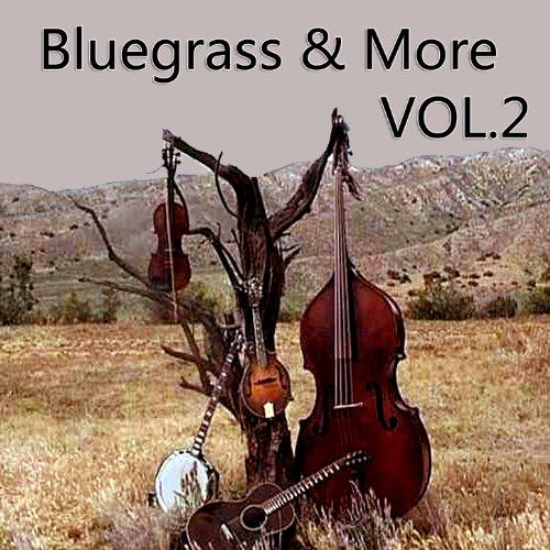 Bluegrass & More, Vol. 2