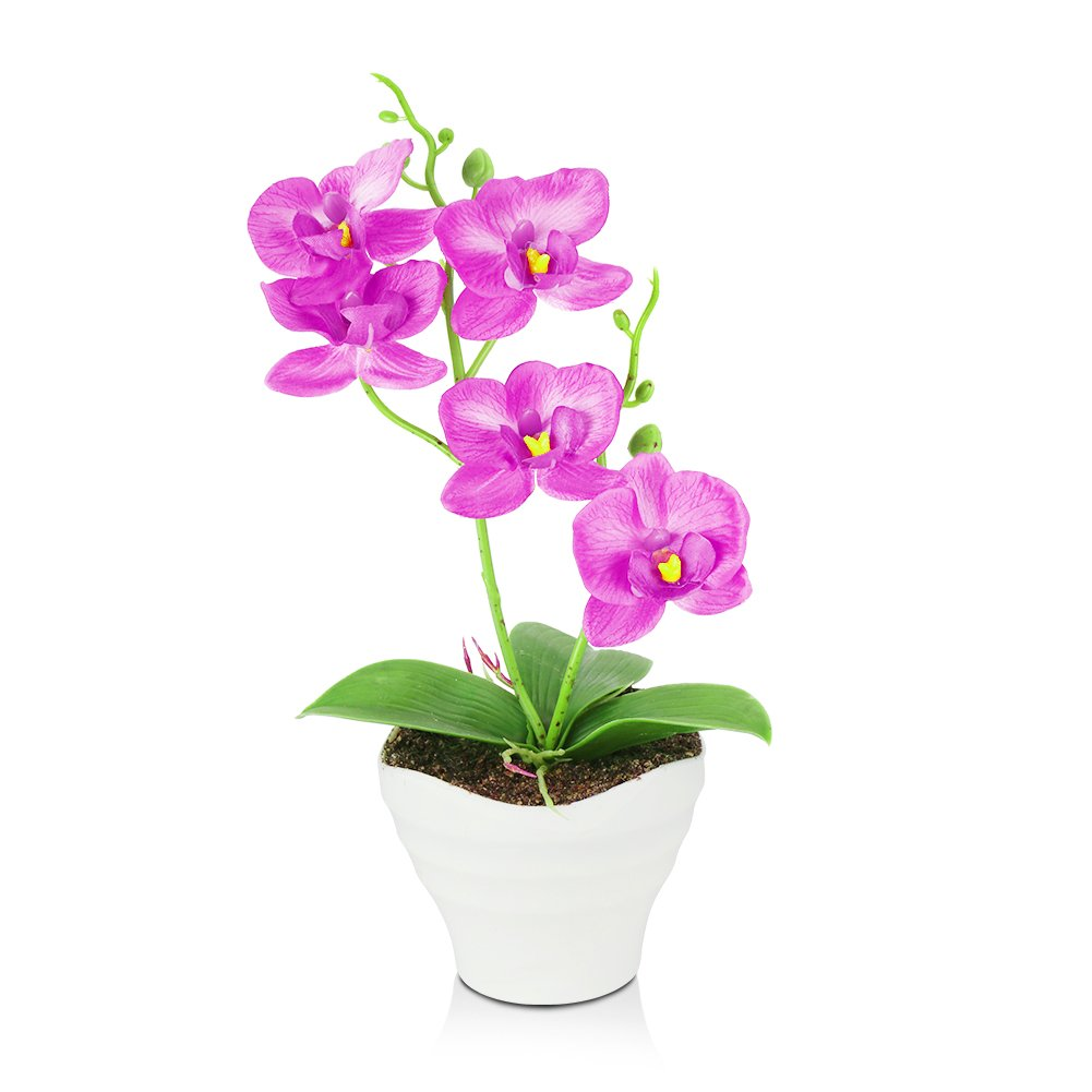 The Bloom Times Artificial Flowers Fake Plants Silk Plastic Artificial Simulation Butterfly Orchids (Purple) by The Bloom Times