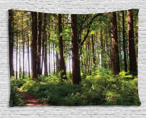 Tapestry Ambesonne Pathway Scenery Hanging