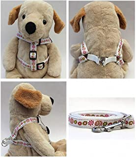 "product image for Diva-Dog 'Winter Garden' Custom 5/8"" Wide Dog Step-in Harness with Plain or Engraved Buckle, Matching Leash Available - Teacup, XS/S"