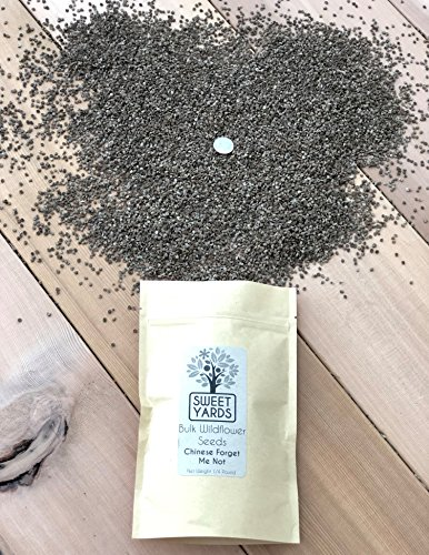 Chinese Forget Me Not Wildflower Seeds - Bulk 1/4 Pound Bag - Over 22,000 Open Pollinated Seeds - Blue Cynoglossum amabile by Sweet Yards