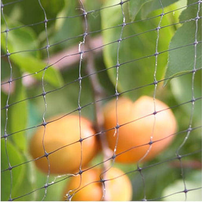 12x4m Malla Antipájaros Red Antipájaros Negro Red de protección contra Pájaros Malla Protección para Frutas Cultivos Plantas árboles Viñedos contra Aves: ...