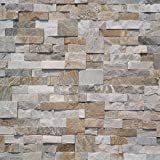 Koni Stone Citali Series Forrest 7 sq. ft. Panel 6 in. x 24 in. x 0.40 in. - 0.80 in. Natural Stone