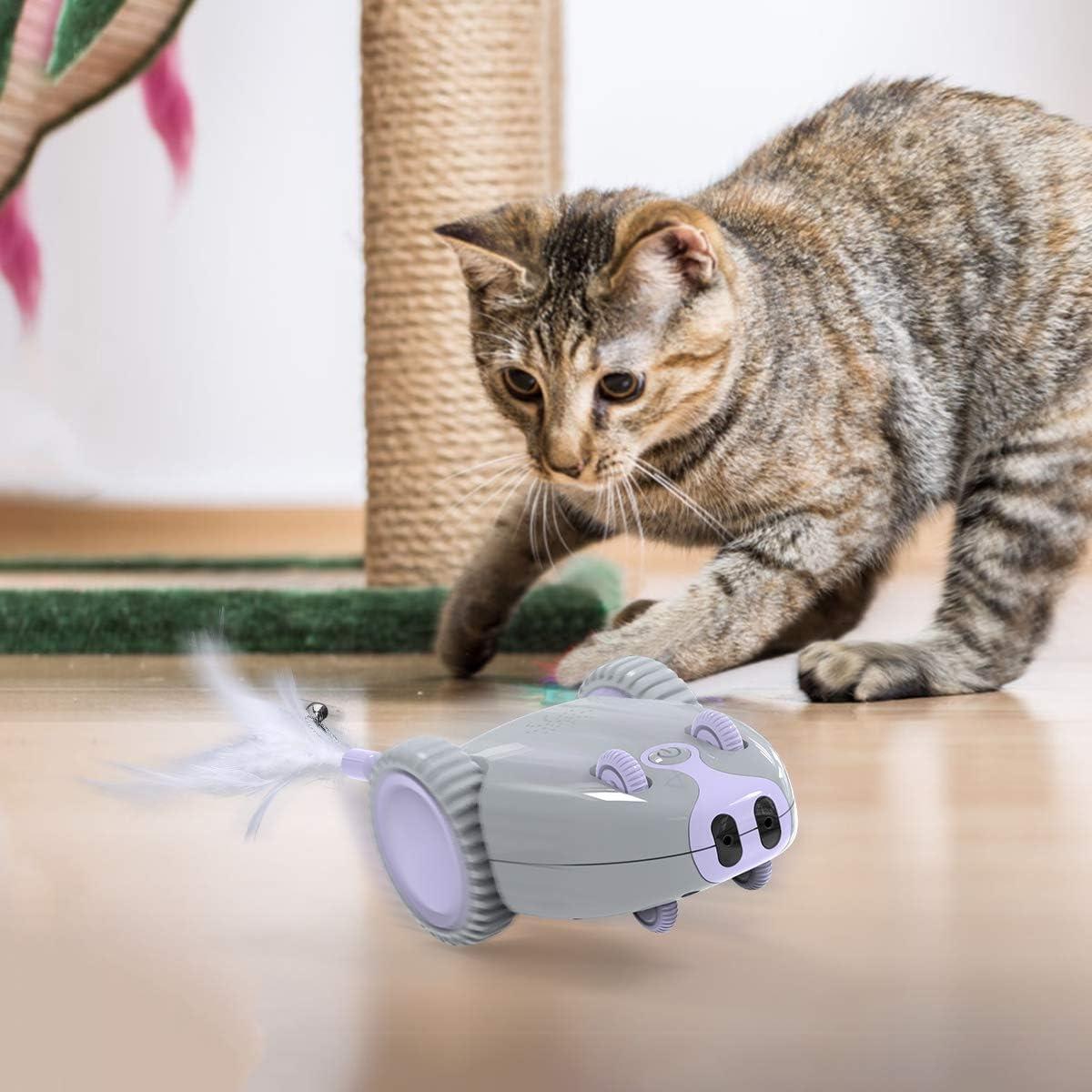 Juguete interactivo para gatos Dadypet con plumas por 23,99€ ¡¡60% de descuento!!