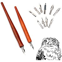 Manga Pen Cartoon Comic Pen Comic Dip Set Calligraphy Pen Set Nib Art Drawing Tools 2 Redwood Pen Holders and 10 Nibs…