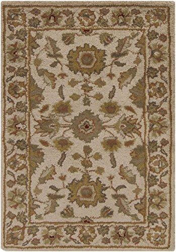 Crowne Beige Rug (Surya Crowne CRN-6011 6' x 9' Beige)