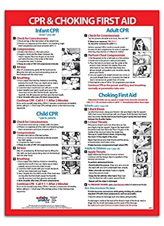CPR & Choking First Aid Poster / Chart for Infants ...