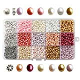 TOAOB 2400pcs 4mm Tiny Satin Luster Glass Pearl Bead Loose Beads Multi Colors Wholesale Beading with Plastic Organizer Box