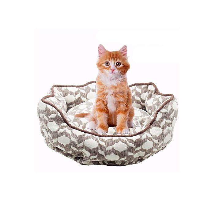 JiuErDP Caseta para Perros Disponible en Todas Las Estaciones Basura para Gatos Artículos para Perros Peluche Perro pequeño Perro Mascota Caseta para Gatos ...