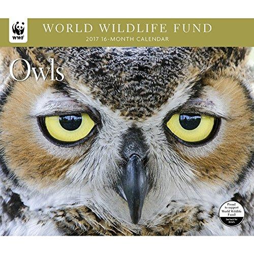 2017-world-wildlife-fund-owls-deluxe-wall-calendar