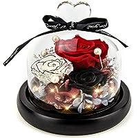 Fresh Flower Handmade Eternal Rose - Kylin Glory Preserved Flowers with Light Creative Decor Mother's Day Valentine's…