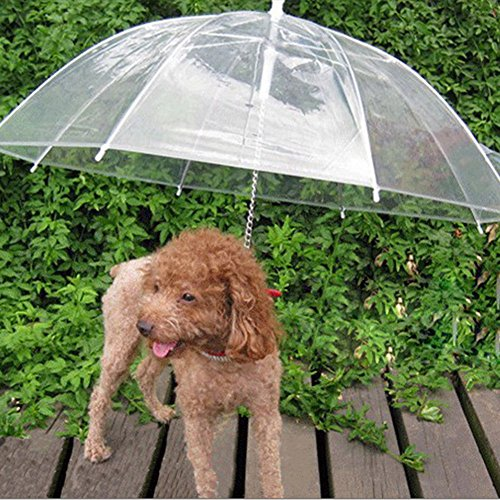 Drowned Costume (Transparent Waterproof Pet Umbrella Raincoat with Leash Keeps your Pet Dry and Comfortable in Rain)