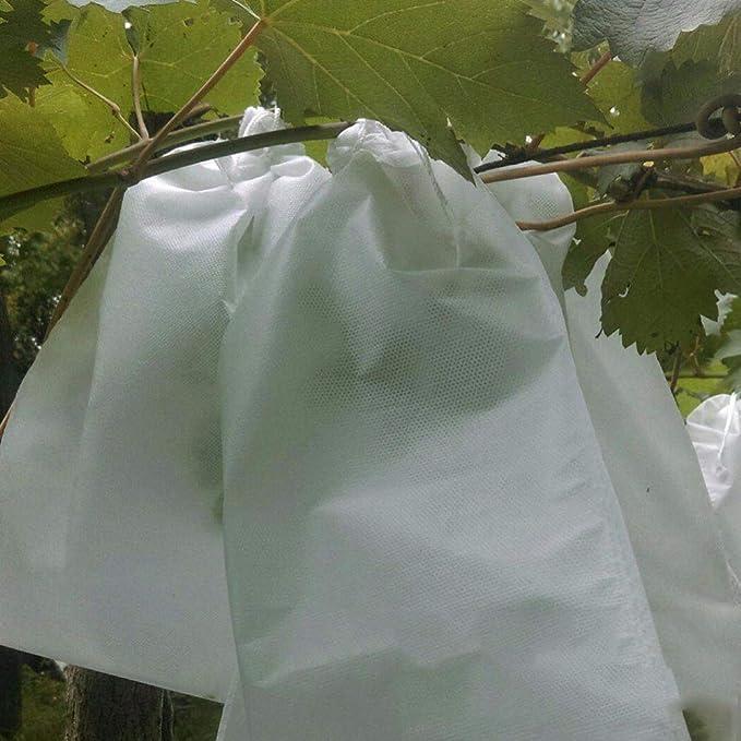 WOVELOT 100 Pcs Bolsas De Proteccion De Uva Bolsa De Malla Para Uvas De Frutas Y Verduras En Contra Bolsa De Insectos Impermeable Control De Plagas ...