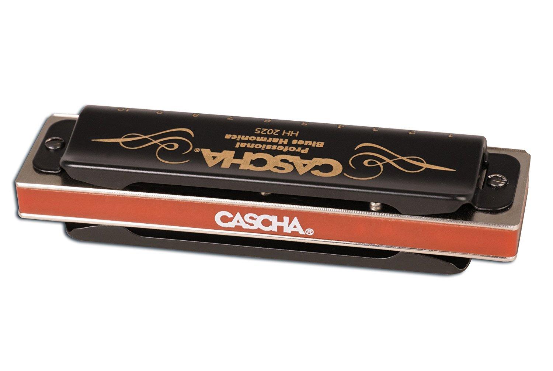 Cascha HH 1610 IT Set arm/ónica de blues profesional con manual en italiano