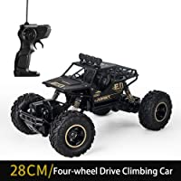 TechEase New Design Metal Alloy Body Double Motor 4X4 Remote Control Car 1:16 Scale Big Size Rock Crawler Car - (Black)