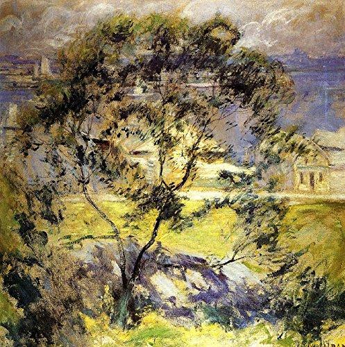 "John Twachtman Wild Cherry Tree Albright-Knox Art Gallery 30"" x 30"" Fine Art Giclee Canvas Print Reproduction (Unframed)"