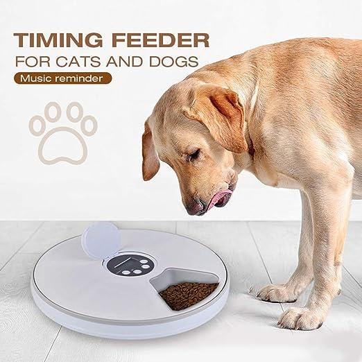 Alimentador De Tiempo para Gatos Y Perros con Recordatorio De ...