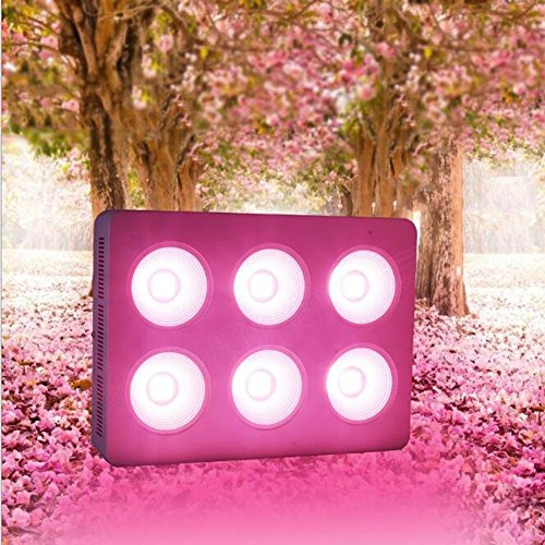Wei-d Plant Light 1200W LED Lights Plants Growing Lighting Hydroponic Lamp for Indoor Garden Bonsai Greenhouse Garde Full Spectrum Balcony Fruit Vegetable Flower Seeds Seaweed Growth , 1200W by Wei-d
