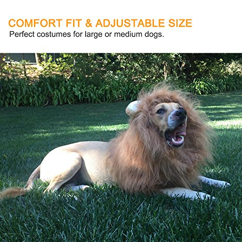 Dog Lion Mane Gimilife Lion Mane Wig Costumes For Small