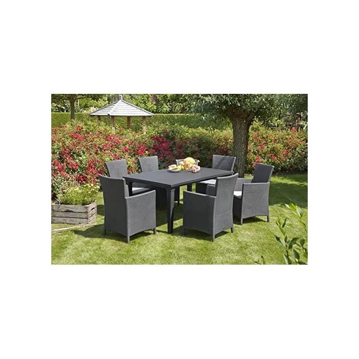 61nZBC6W1LL Incluye un cojín en el asiento y respaldo ergonómico. Sillón para interior y exterior, ideal para jardines, terrazas, porches y otros espacios de entretenimiento. Acabado de ratán plano plano, duradero, resistente al clima y a la corrosión.