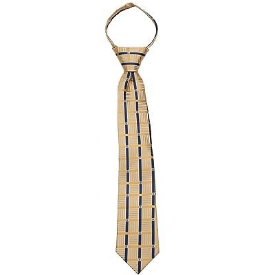 Boys 14 inch Pre Made Pattern Geometrics Stripe Designer Zipper Necktie