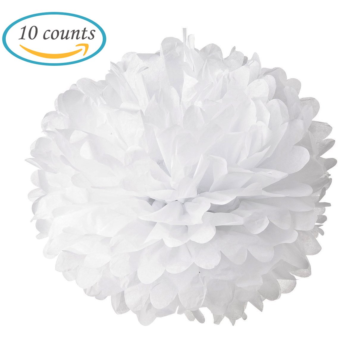 Amazon.com: 10pcs White Tissue Hanging Paper Pom-poms, Hmxpls Flower ...