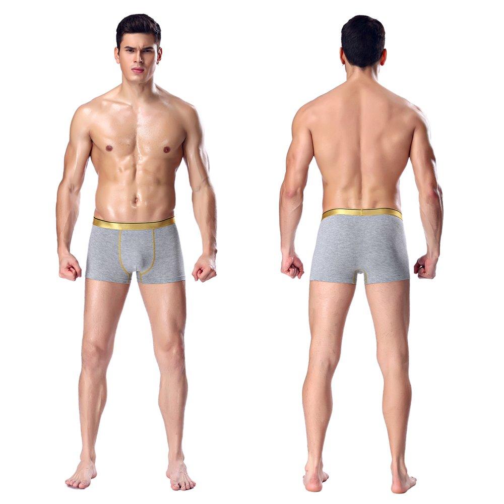 Mens Underwear Boxer Briefs Men Pack Soft Modal Cotton Healthy Breathable Underwear Spandex (M, grey)