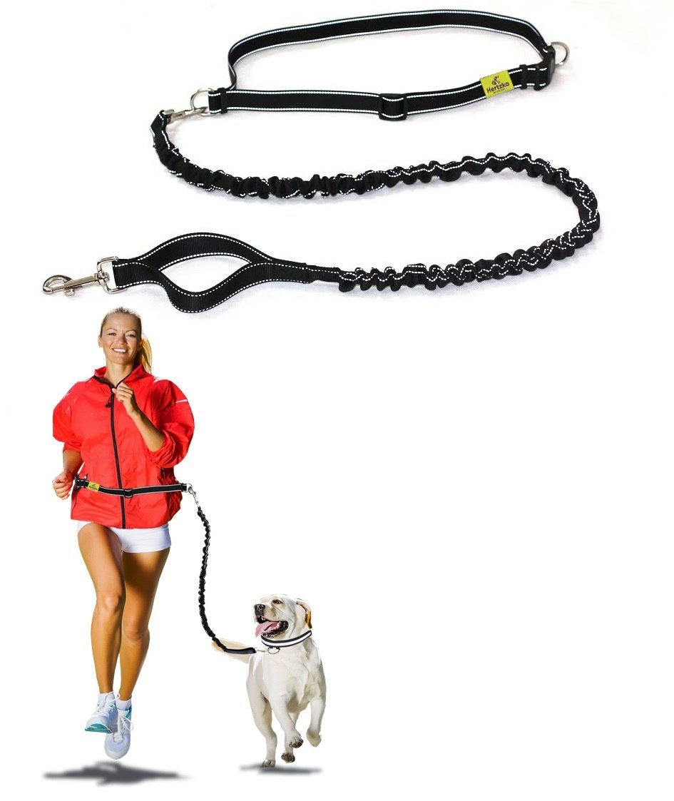 Hertzko Dog Running Waist Leash – Enjoy Walking, Running, or Hiking with Your Dog Hands Free! – Strong and Durable Nylon Bungee Pet Leash (48 inches Bungee)
