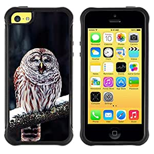 LASTONE PHONE CASE / Suave Silicona Caso Carcasa de Caucho Funda para Apple Iphone 5C / Cute Funny Winter Sleepy Owl
