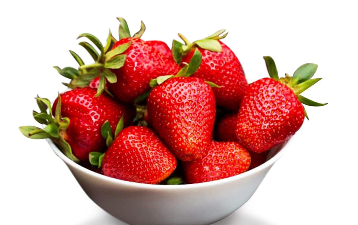 Organic Earliglow Strawberry 315 Seeds UPC 600188194739 Commercial Pick-Your-Own Variety 1 Free Plant Marker