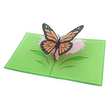 Amazon.com: dlonline tarjeta de la mariposa 3d, mariposa ...