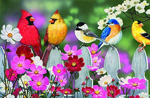 Songbirds 30 LARGE Piece Jigsaw Puzzle by SunsOut