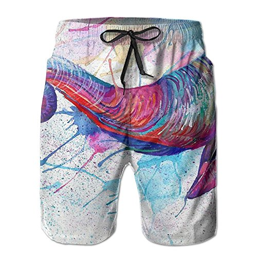 KJDS Mens Elephant Quick Dry Summer Beach Shorts Pants with Mesh Lining for Men ()