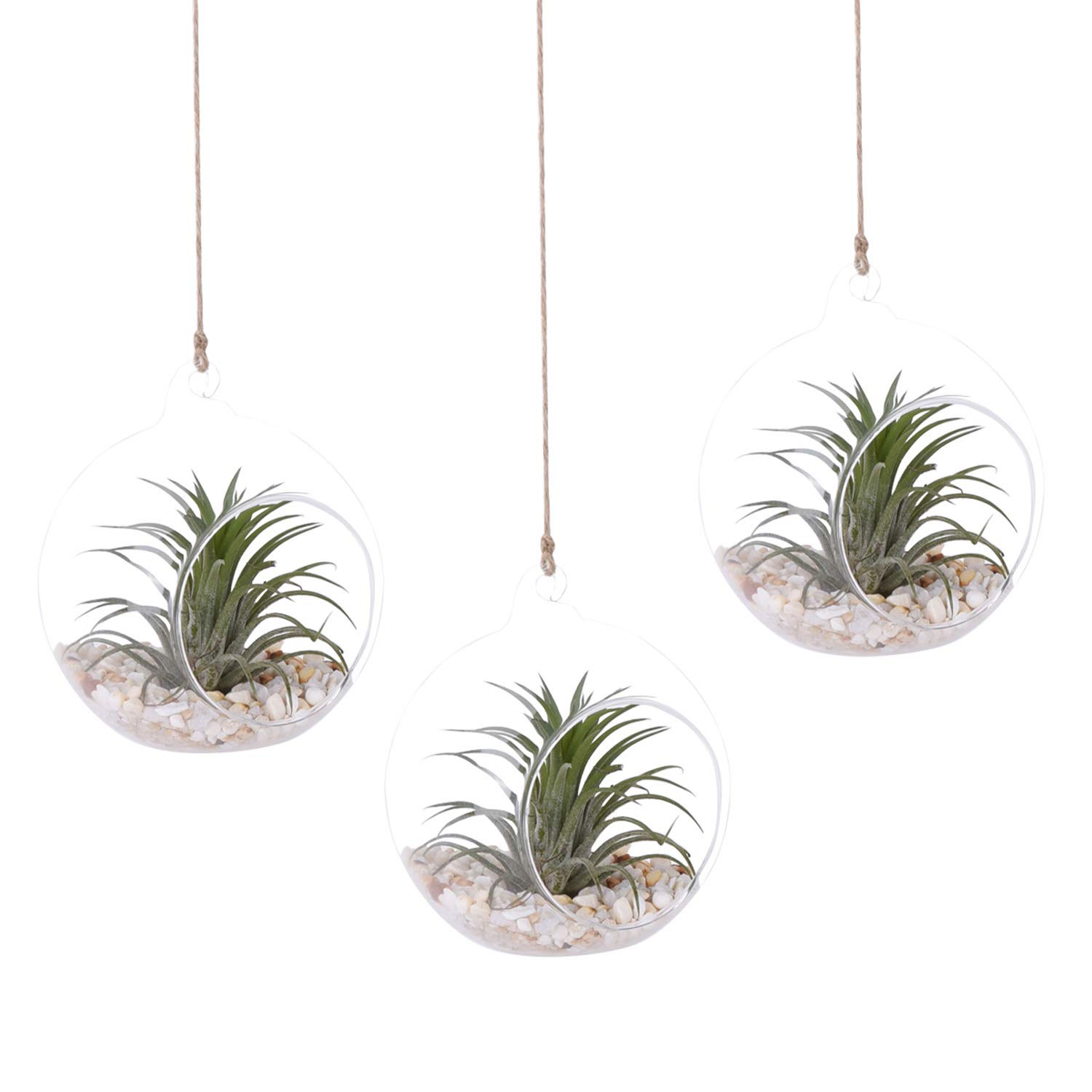 AUTOARK 4 3/4 inches Glass Globe - Hanging Plant Terrarium Glass Vase Succulent Air Plant,Candle Holder,Home & Office Decor Accent,3 Pack,APT-006