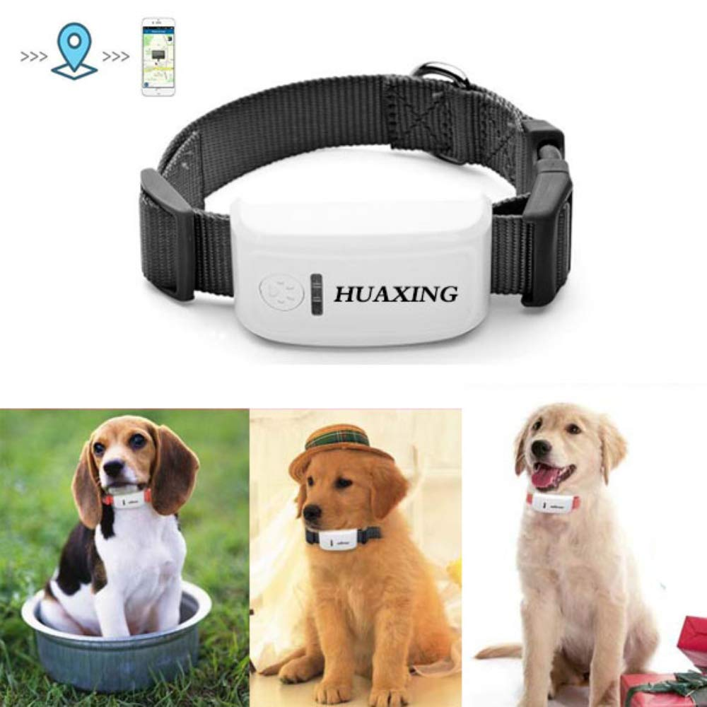 HUAXING Mini GPS Tracker,Lightweight and Waterproof 12 Days Long Standby Timedog Tracking Device, for Dogs/Cats/Pets,Black