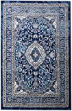 8 x 10 Area Rug Blue & Ivory Oriental Medallion Rug for Living Room Dining Room Bedroom Transitional Vintage Distressed Design [ 7′ 10″ X 9′ 10″]
