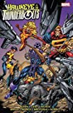 img - for Hawkeye & Thunderbolts Vol. 1 book / textbook / text book