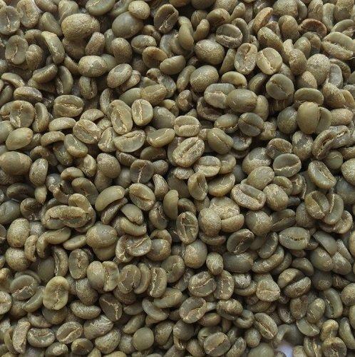 Savored Culture - Habiba Bean - Eithiopia - Green Beans
