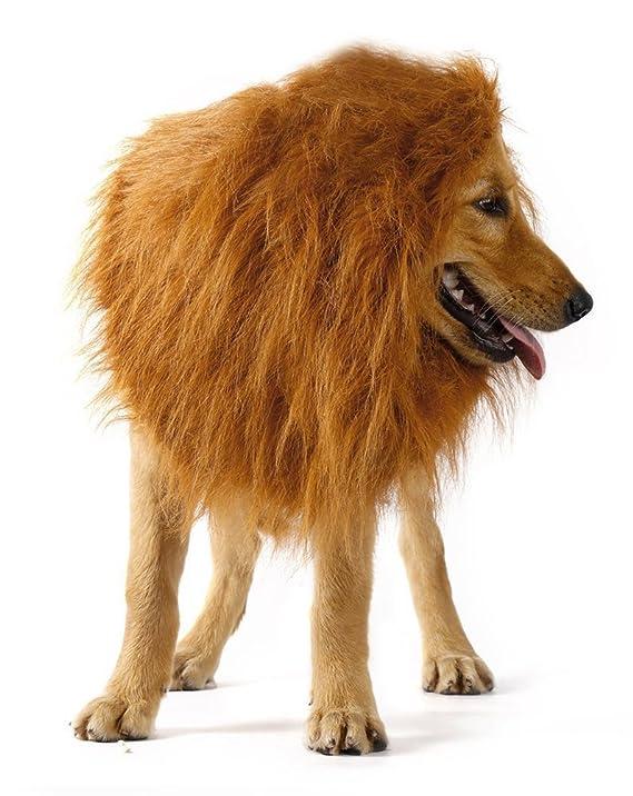 Gdv Lion Mane peluca de pelo disfraz para gran perro mascota: Amazon.es: Productos para mascotas