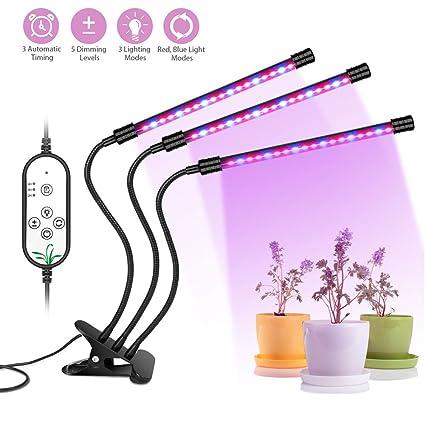 Amazon.com: Auledio - Bombillas LED de cultivo para plantas ...
