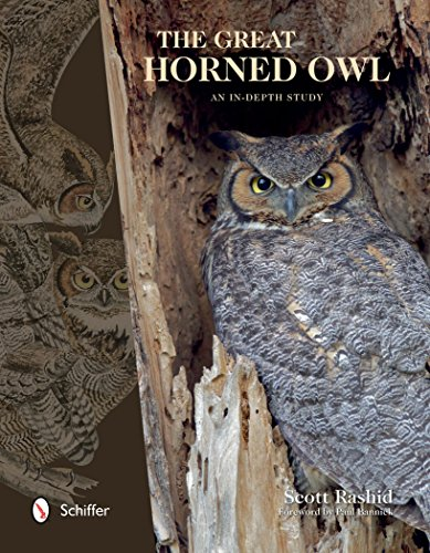 The Great Horned Owl: An In-depth Study