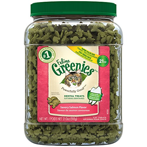 FELINE GREENIES Dental Natural Cat Treats Savory Salmon Flavor, 21 oz. - Treat Tub Chews Dental