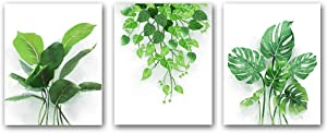 "Set of 3 Small Fresh Plants Wall Art Prints,Green Plants Poster with Leaves of Tropical Nature Plants ,Watercolor Plants Wall Art Canvas for Living Room Home Decor.Gift.(Unframed,8""X10""inches)."