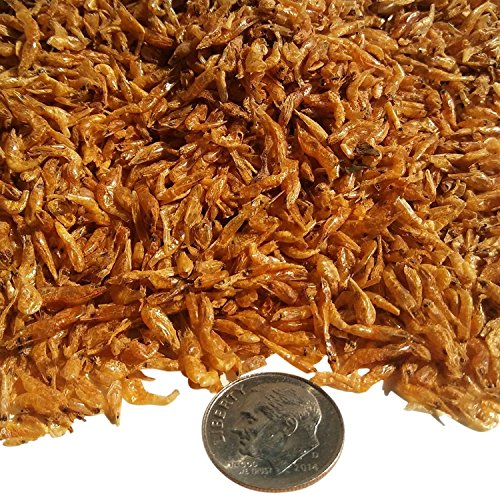 "Aquatic Foods Inc. Freeze Dried Red Shrimp 1/8"" to 3/8"" for Tropical Fish, Pond Fish, Pond & Land Turtles.1-lb"