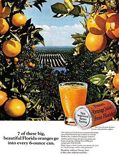1967-florida-orange-juice-beautiful-florida-oranges-florida-citrus-commission-print-ad